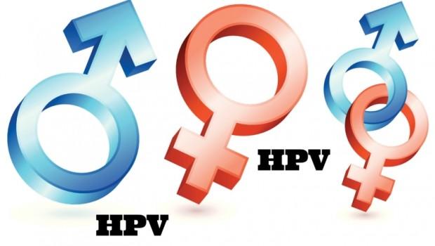 Ştiai că HPV-ul este un virus cu o familie largă de specii (grupuri), ce conţin la rândul lor mai multe tipuri de virus. De exemplu, există două tipuri majore de specii ce conţin 15 tipuri de HPV ce cauzează cancer.
