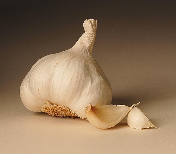 1-bulb-cal-garlic1