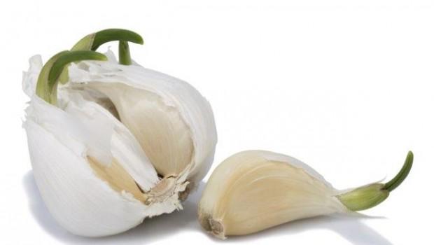 De fiecare dată cumperi prea mult usturoi şi începe să germineze înainte de a-l folosi pe tot?