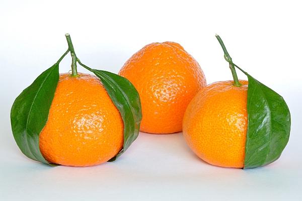 shake-citrice-slabire