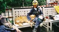 Vi-l prezint pe Bretagne, un câine erou care a participat la operațiunile de salvare de la World Trade Center.