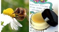 Datorită faptului că nu conține chimicale, această cremă este ideală pentru persoanele cu pielea sensibilă sau cu acnee.
