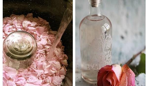 Iată cât de ușor îți poți prepara apa de trandafiri, chiar din confortul casei tale! Avantajul acesteia este că nu conține chimicale!