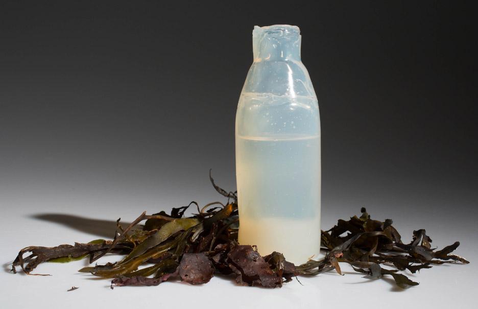 A fost inventata sticla biodegradabila din alge (2)