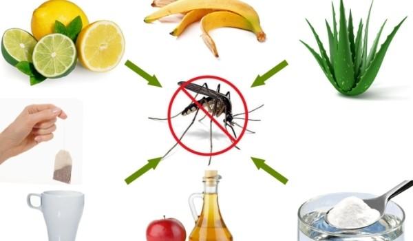 Cu toţii ştim ce disconfort ne cauzează insuportabilii ţânţari! Următoarele remedii sunt simple, rapide, naturale şi eficiente, eliminând pe loc senzaţia de mâncărime.