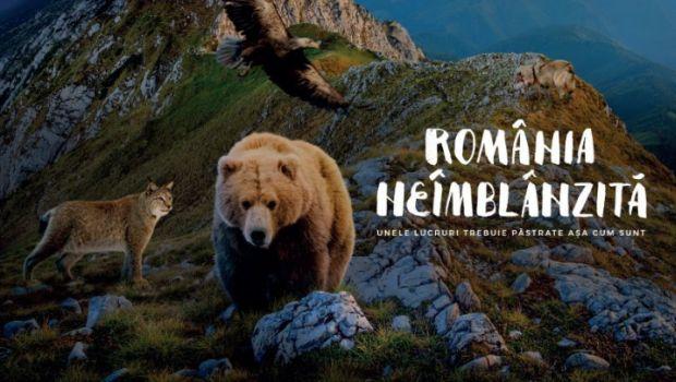 Dacă nu ai mai mers niciodată la cinema pentru a vedea un documentar, acum este momentul să o faci!